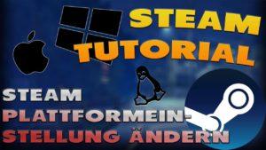 Steam Plattformeinstellung ändern - Haton.net